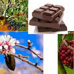 Top 10 Anti Inflammatory Foods For Good Health