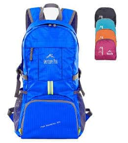 Venture Pal Lightweight Travel Backpack
