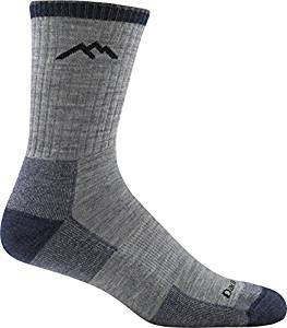 Darn Tough Men's Micro Crew Cushion Hiking Socks